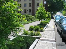 Right-of-Ways: Designing Safe, Healthy, and Sustainable Streets