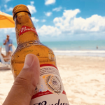 By 2022, Budweiser Brazil will switch to 100% clean energy