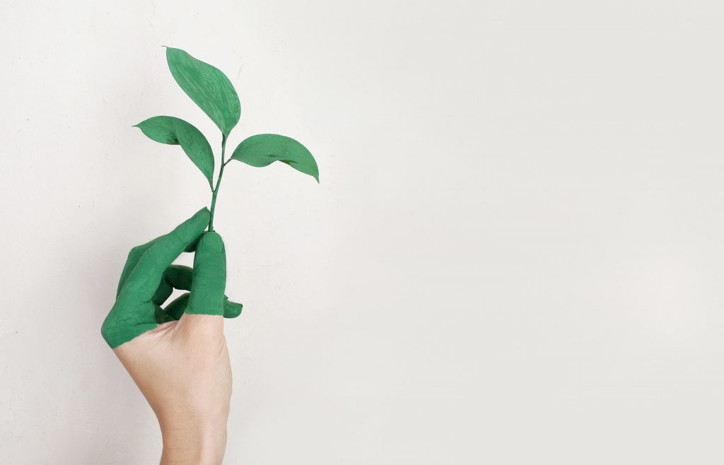 New Sustainable Technologies and Green Building Materials