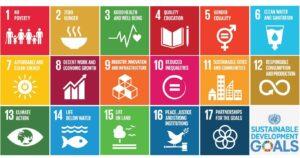UN-SDG-GBRIonline