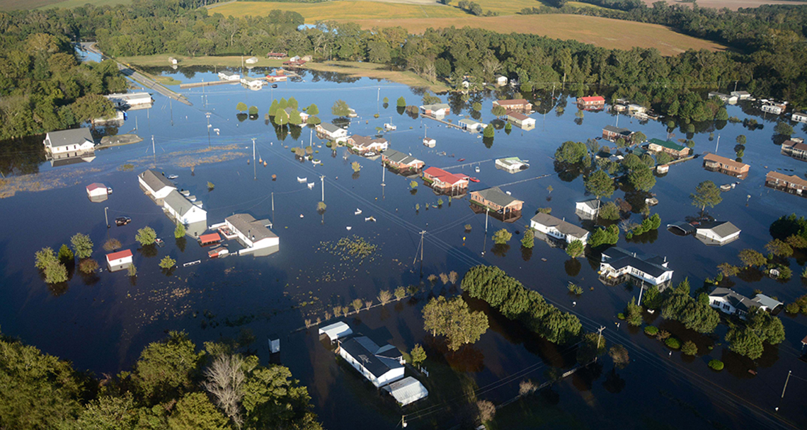 WEDG: Improving Resilience, Ecology, and Waterfront Access + Case Studies