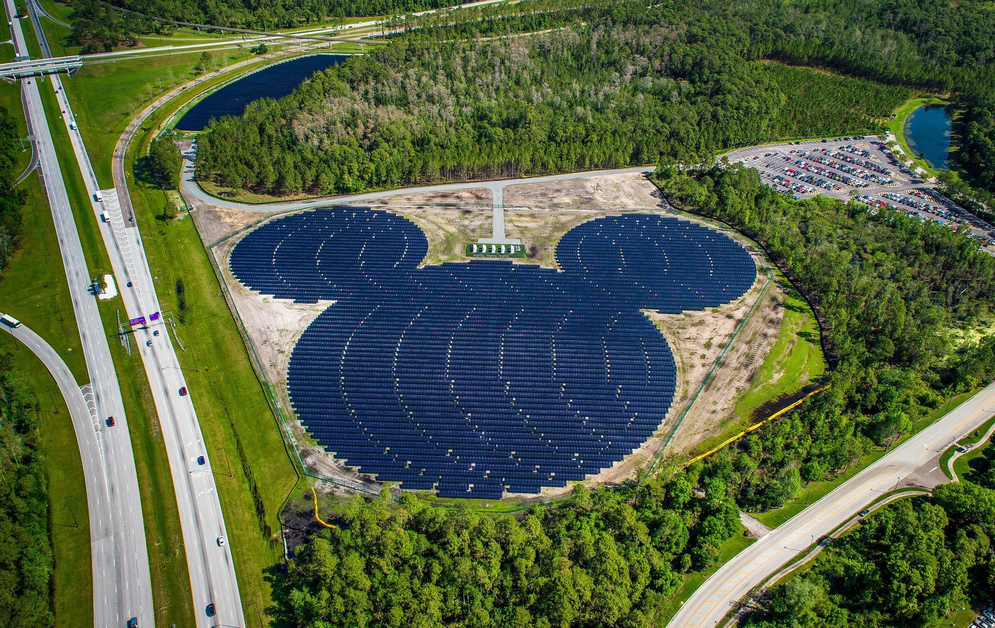 Walt Disney's Sustainability Initiatives: A Case Study