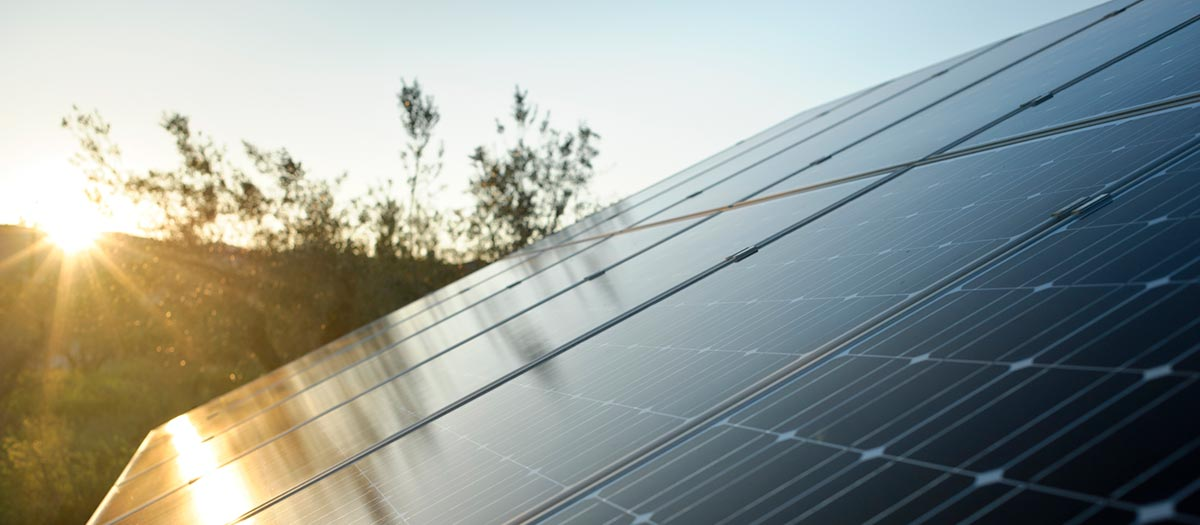 Green Tagging the Electric Grid with Renewable Energy Credits